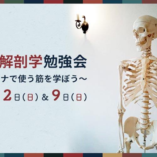運動器系 解剖学勉強会のご案内 ~ヨーガのアサナで使う筋を学ぼう~